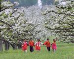 朝鲜族经济生产