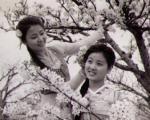 """民族风情歌舞片-""""延边之春"""""""